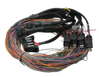 Haltech Platinum PS1000 Wiring Loom Only - Long